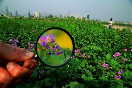 Idea № 277: La red social Landshare para jardineros y hortelanos