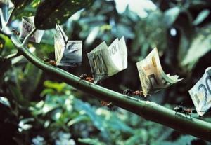 7 consejos para la supervivencia financiera