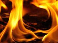 Idea № 488. Firelse: El gel ecológico contra el fuego para salvar vidas y bienes