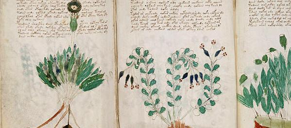 Científicos descifran una parte del Manuscrito de Voynich