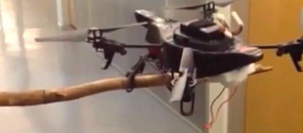 Idea № 586. El drone de garras que es capaz de posarse en ramas y en superficies difíciles