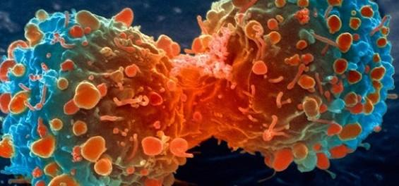 """Idea № 590. Científicos británicos buscan una cura contra el cáncer con el juego """"Genes in Space"""""""